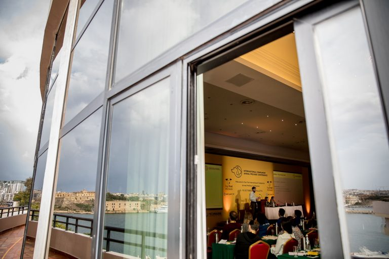 Excelsior Hotel Valetta Malta Event Photographer - Dogs Trust ICAWC