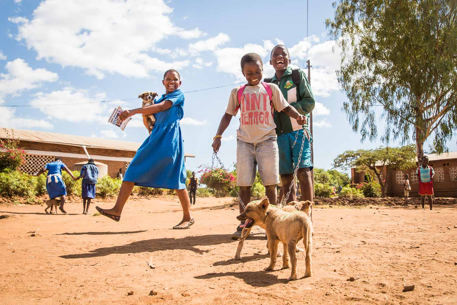 Mission Rabies Malawi - NGO Photography UK Dogs Trust Worldwide
